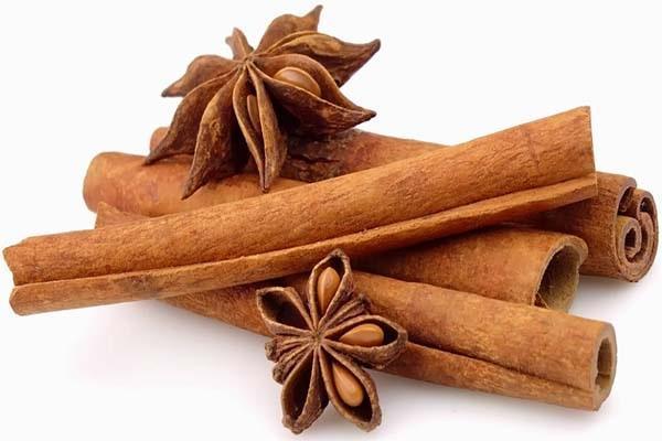 Vỏ quế là nguyên liệu tuyệt vời trong chế biến món ăn và thuốc điều trị bệnh