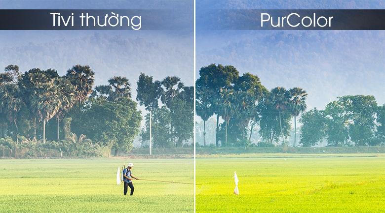 Công nghệ PurColor với dải màu rộng cho hình ảnh sống động, màu sắc bắt mắt